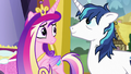 Cadance and Shining look relieved at each other S7E3.png