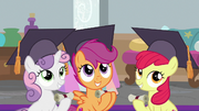 Cutie Mark Crusaders wearing graduation caps S8E12