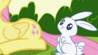 Fluttershy's cutie mark appears S1E23