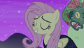 """Fluttershy """"I'm perfectly fine with it"""" S5E21.png"""
