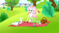 Fluttershy having a picnic with her animal friends SS14