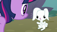 Fluttershy miming that she and Angel switched bodies S9E18