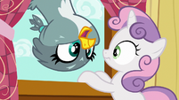 Gabby pops next to Sweetie Belle in the window S6E19