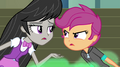 Octavia Melody argues with Scootaloo EG2.png