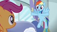 Rainbow --every town in Equestria has one-- S6E14