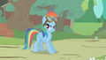 Rainbow with flying goggles S01E10.png