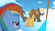 S01E23 Młoda Rainbow patrzy na swych konkurentów