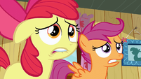 Scootaloo & Apple Bloom freak out S2E17