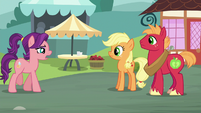 Spoiled Milk approaching Applejack and Big Mac S6E23