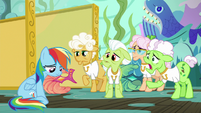 "Applesauce ""Applejack put you up to this?"" S8E5"