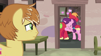 Feather Bangs watches Big Mac and Sugar Belle cuddle S7E8