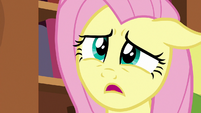 Fluttershy -would you mind helping me tidy up-- S7E12