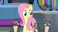 Fluttershy and raccoons left in charge S8E4