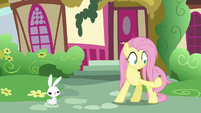 Fluttershy catches the tossed potion S9E18