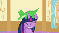 Gummy falls onto Twilight's head S5E11
