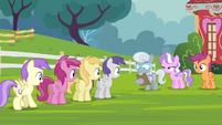 Line of ponies S4E15