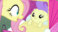 Pegasus Angel talking to Cream Puff S9E18