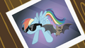 Picture of Rainbow Dash and the bat wearing sunglasses S2E07.png