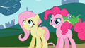 Pinkie Pie and Fluttershy1 S02E07.png