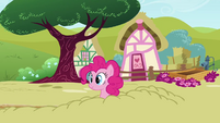 Pinkie Pie pops head out of ground S3E3