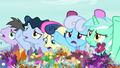Ponies clamoring agitatedly at the flower trio S7E19.png