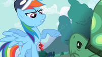 Rainbow Dash pointing at Tank S2E07