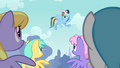Rainbow Dash speaking to the Pegasi S2E22.png