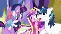 "Shining Armor ""my friend from the royal guard"" S7E3"