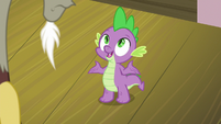 Spike -splendors of Hearts and Hooves Day- S8E10