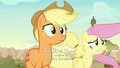 AJ and Fluttershy with windswept manes S8E23.png