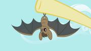 Bat S2E07