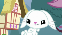 Bunny Fluttershy looks annoyed at Angel S9E18