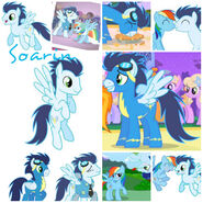 Collagesoarin