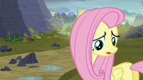 Fluttershy --there isn't enough food here for you!-- S5E23