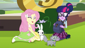 Fluttershy reveals all her animal friends EG3.png