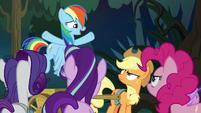 Rainbow Dash -we're all friends here!- S8E13