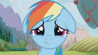 Rainbow Dash Sad S2E15