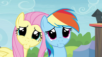 Rainbow Dash and Fluttershy pretty please S4E22