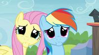 Rainbow Dash and Fluttershy pretty please S4E22