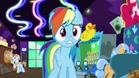 Rainbow Dash looking at all the old ponies S8E5