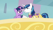 S02E25 Shining Armor oraz Twilight