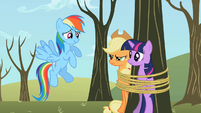 Twilight Sparkle Applejack tied tree S2E10