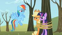 Twilight Sparkle Applejack tied tree S2E10