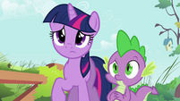 Twilight and Spike concerned S03E13