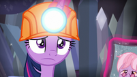 Twilight disappointed in the silver mine S9E5