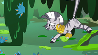 Zecora reaching out for more crisscross moss S7E20