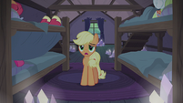 Applejack -I know they have their traditions- S5E20