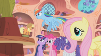 Applejack supports going to Zecora's house S1E09
