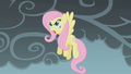 """Fluttershy """"How dare you!"""" S01E07.png"""