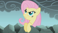 """Fluttershy """"How dare you..."""" S01E07.png"""